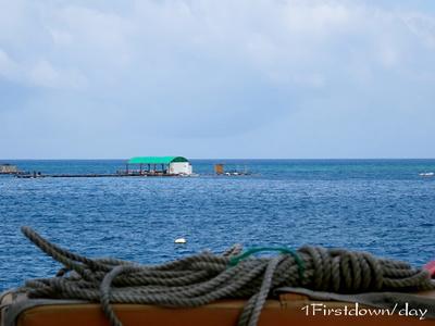 美ら海水族館の予備水槽
